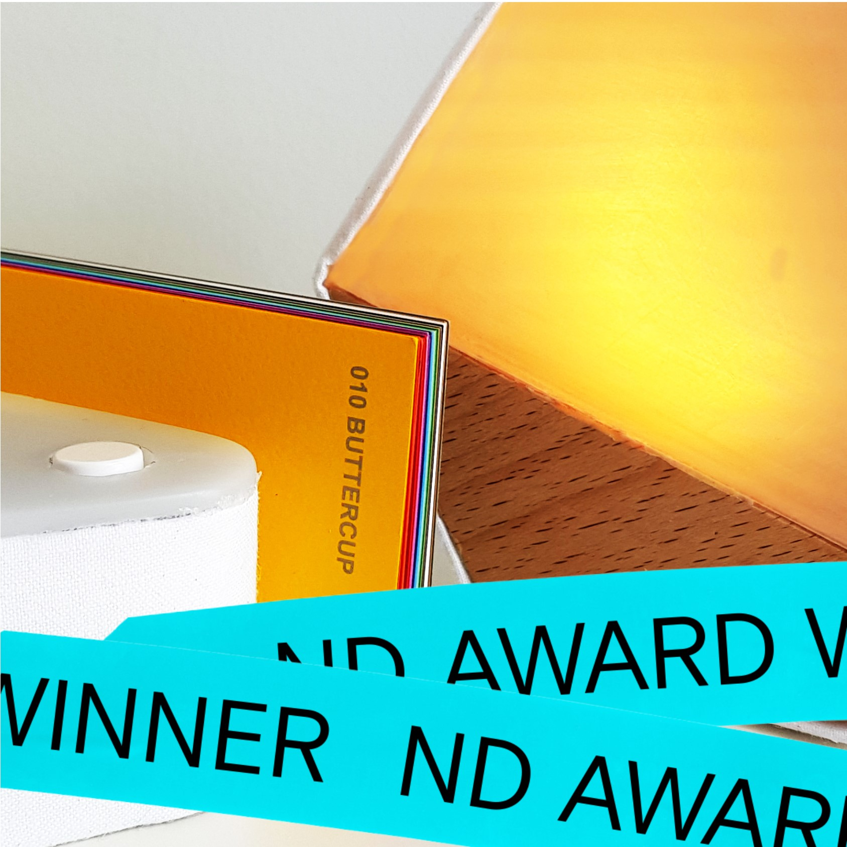 17.2 Naomi Cairns Winner of 'Colour In Design Award