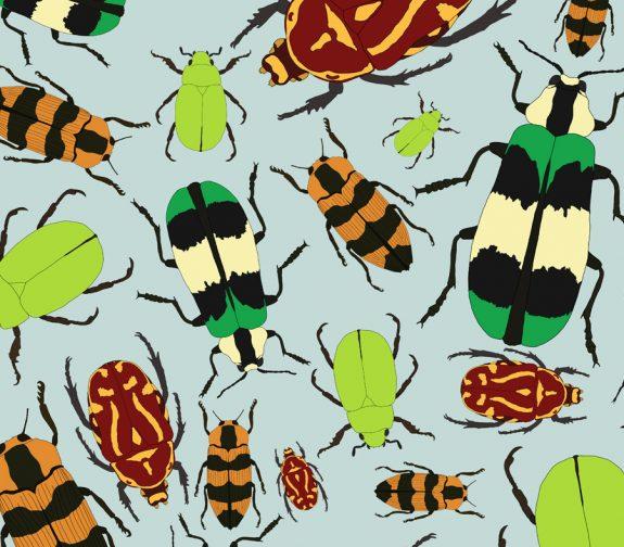 Beetle Repeat