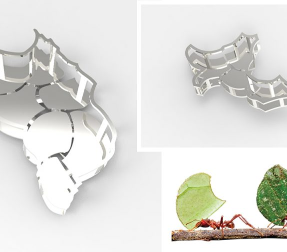 Leaf Cutter Ants - Brooches