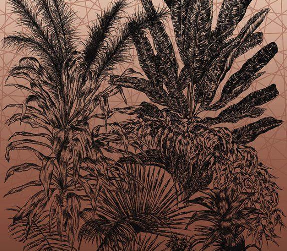 Palms of the Southern Hemisphere