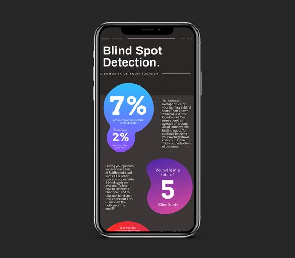 The Blind Spot Detection Kit