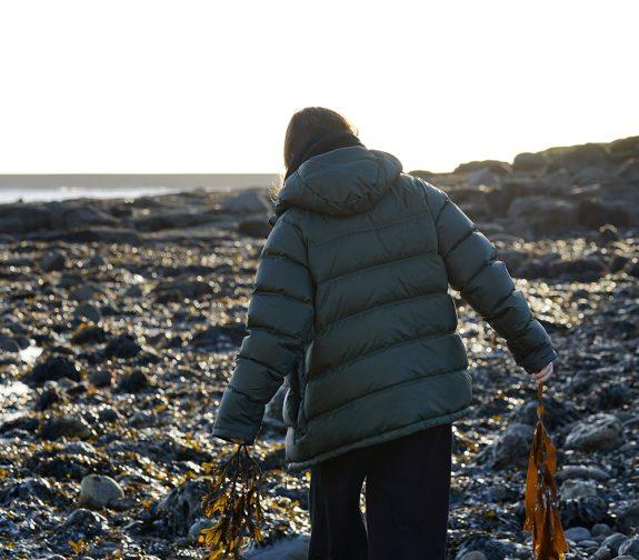 Seaweed: An Alternate Catch