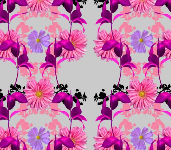Photography Blossom