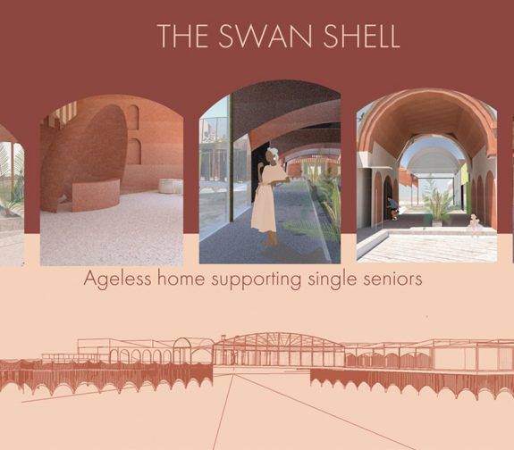 The Swan Shell