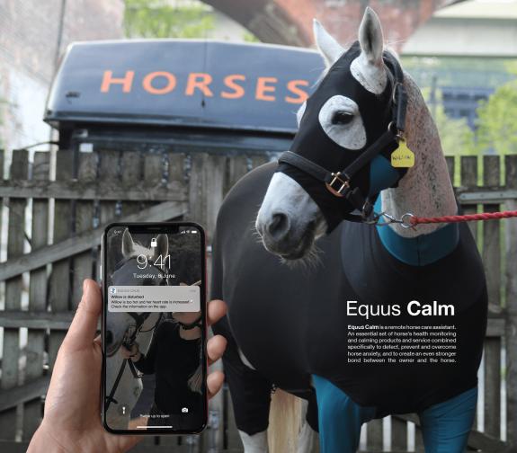 Equus Calm